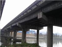 广东佛山顺德林头大桥维修加固工程