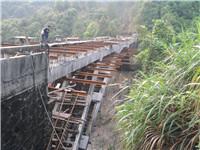 广东新丰段徐坑大桥维修加固工程